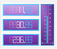 dot net numeric display
